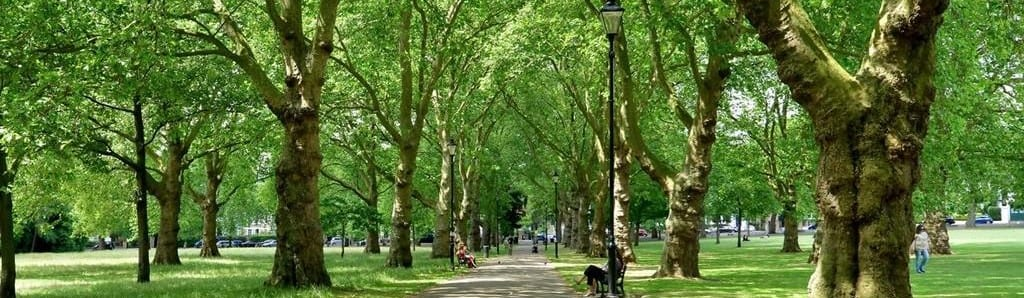 a picture of highbury fields near Angel in Islington