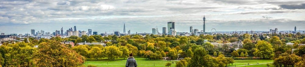 Primrose Hill view of London